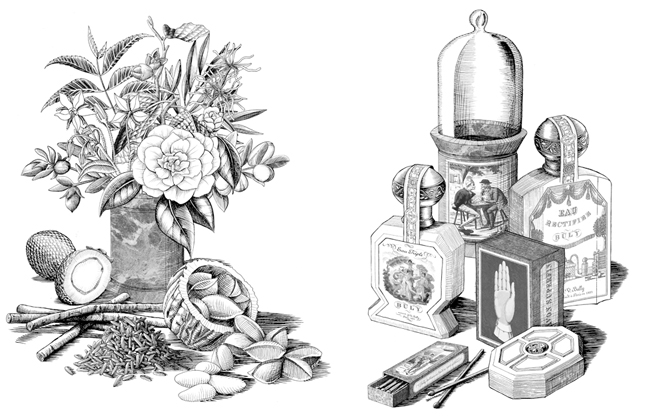 I just love these hand-done illustrations from Buly's website!
