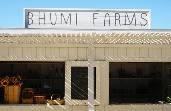 bhumi_10